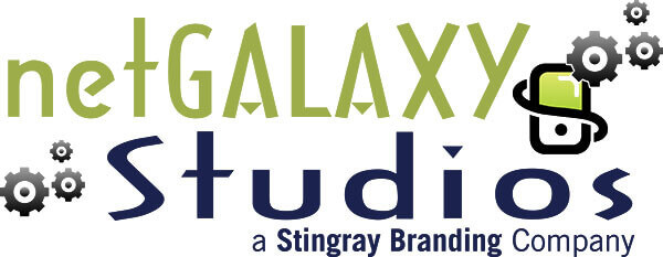 netgalaxy studios, stingray branding, charleston mobile app design