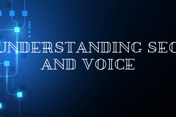 Understanding SEO and Voice